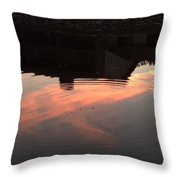 Li'l Ripples In A Florida Lake Throw Pillow
