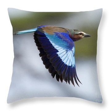Lilac-breasted Roller-signed Throw Pillow by J L Woody Wooden
