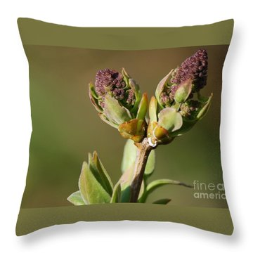 Lilac Bud Throw Pillow