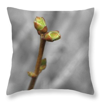 Lilac Bud Season Throw Pillow by Aliceann Carlton