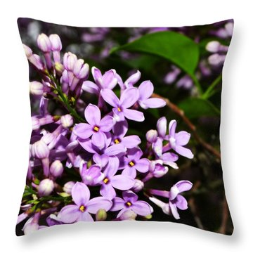 Lilac Bush In Spring Throw Pillow by Michelle Calkins