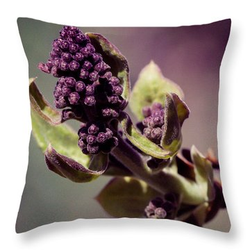 Throw Pillow featuring the photograph Lilac To Be by Cathy Donohoue