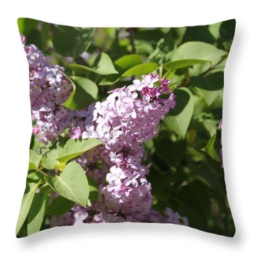 Lilacs 5544 Throw Pillow