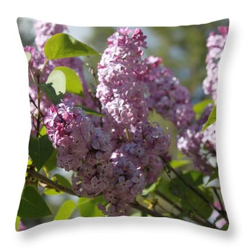 Throw Pillow featuring the photograph Lilacs 5548 by Antonio Romero