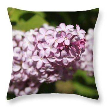 Throw Pillow featuring the photograph Lilacs 5549 by Antonio Romero