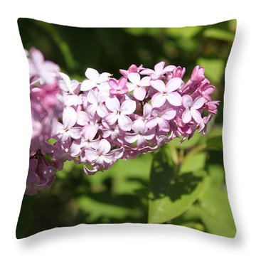 Throw Pillow featuring the photograph Lilacs 5550 by Antonio Romero