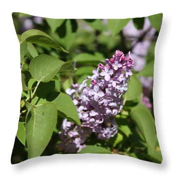 Throw Pillow featuring the photograph Lilacs 5551 by Antonio Romero
