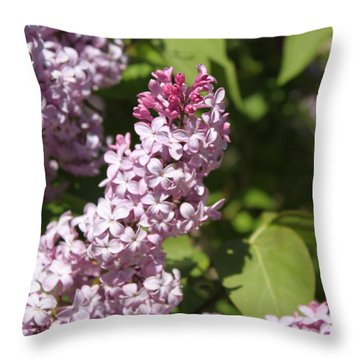 Lilacs 5552 Throw Pillow