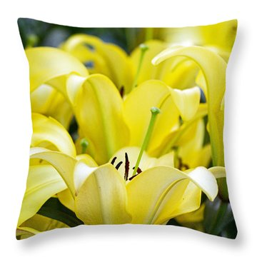 Lilies Of The Field #2 Throw Pillow