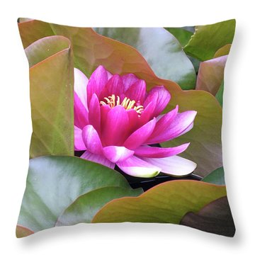Throw Pillow featuring the photograph Lilly In Bloom by Wendy McKennon