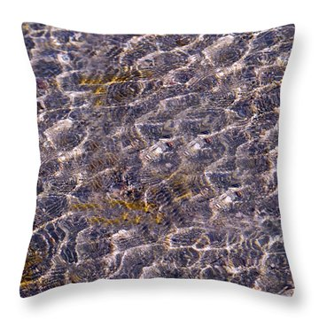 Lilly Lake Throw Pillow by Mark Ivins