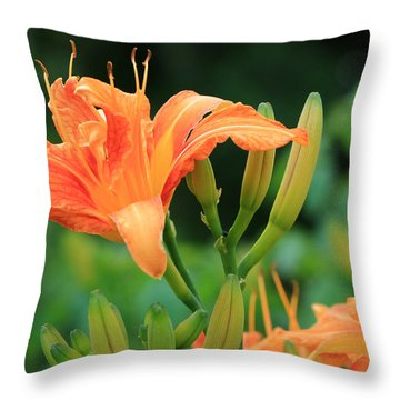 Lily Of The Evening Throw Pillow