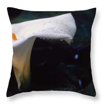 Lilly Of The Tears Throw Pillow by Laurie Paci