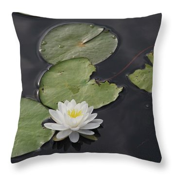 Buddhist Symbol  Throw Pillow