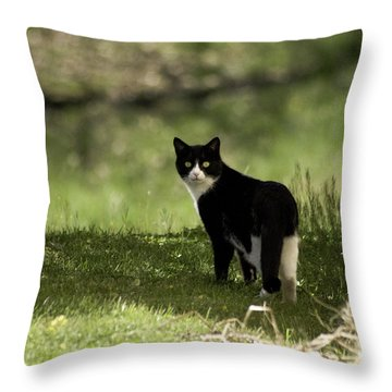 Lilly Throw Pillow by Trish Tritz