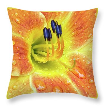 Lily After A Rain Throw Pillow