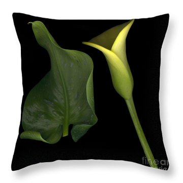 Lily And Leaf Number Two Throw Pillow by Heather Kirk