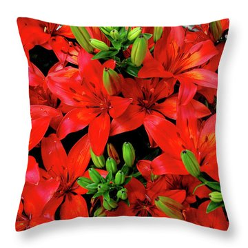Throw Pillow featuring the photograph Lily Blossoms by LeeAnn McLaneGoetz McLaneGoetzStudioLLCcom