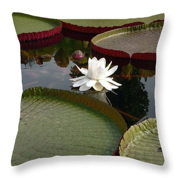 Lily Throw Pillow by David Bearden