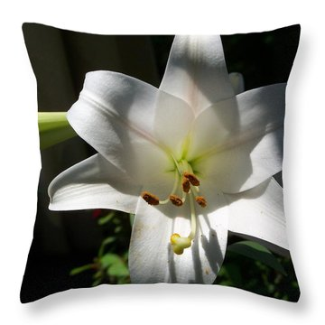 Throw Pillow featuring the photograph Lily In Light by Jake Hartz