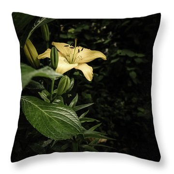 Throw Pillow featuring the photograph Lily In The Garden Of Shadows by Marco Oliveira