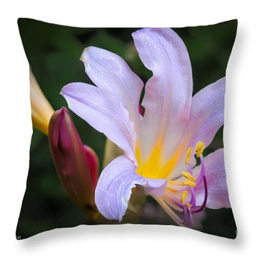 Lily In The Rain By Flower Photographer David Perry Lawrence Throw Pillow by David Perry Lawrence
