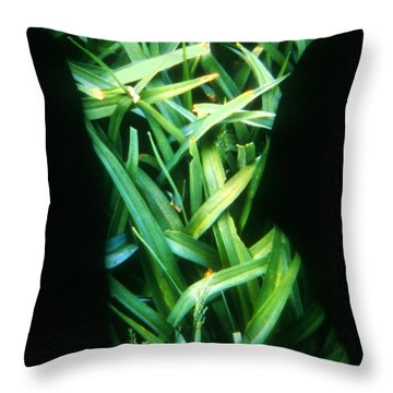 Lily Leaves Throw Pillow by Arla Patch