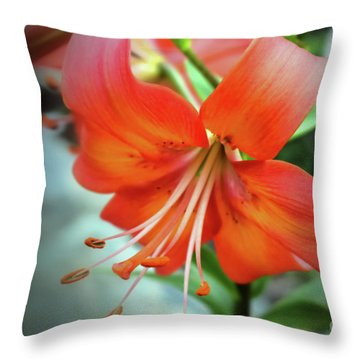 Lily Love Throw Pillow