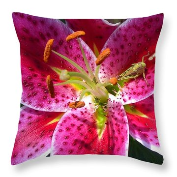Throw Pillow featuring the photograph Lily by Mary-Lee Sanders