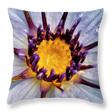 Lily Not Quite In Focus Throw Pillow