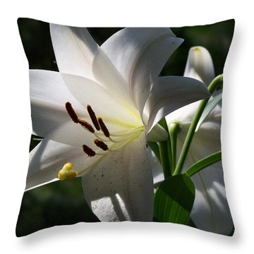 Throw Pillow featuring the photograph Lily Of The Valley by Jake Hartz