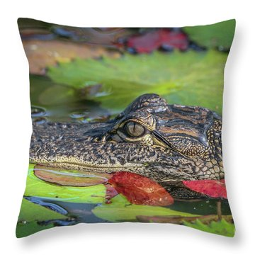 Lily Pad Gator Throw Pillow