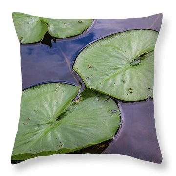 Lily Pad Reflections Throw Pillow