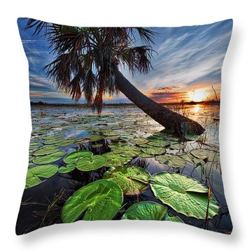 Lily Pads And Sunset Throw Pillow