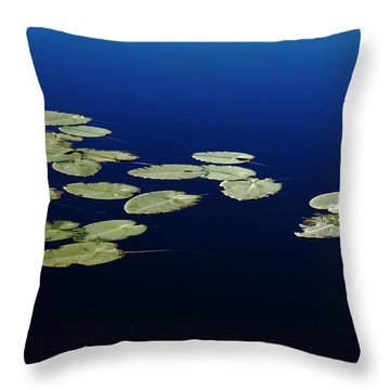 Lily Pads Floating On River Throw Pillow by Debbie Oppermann
