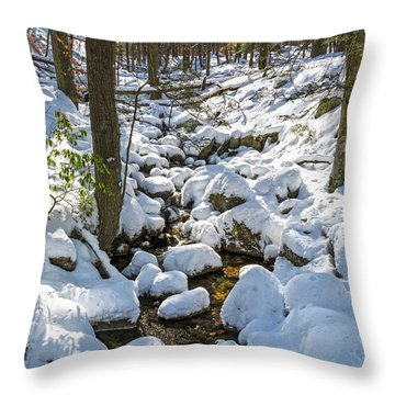 Lily Pads Of Snow Throw Pillow by Angelo Marcialis