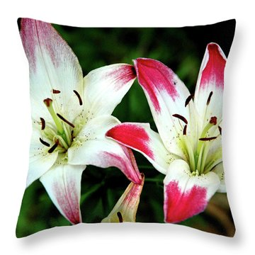 Throw Pillow featuring the photograph Lily Pink Reflections by LeeAnn McLaneGoetz McLaneGoetzStudioLLCcom
