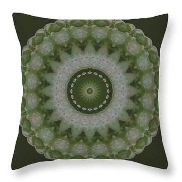 Lily Plaid Throw Pillow