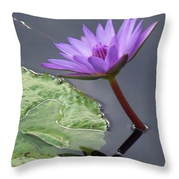 Lily Pond Throw Pillow by Eric  Schiabor