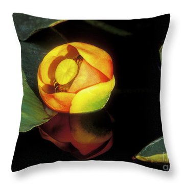 Throw Pillow featuring the photograph Lily Reflection by Sandra Bronstein
