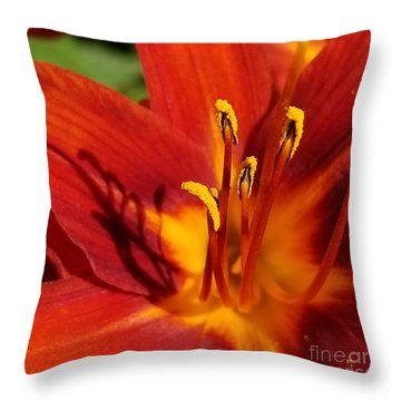 Lily Shadows Throw Pillow
