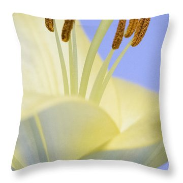Lily Stamens  Throw Pillow
