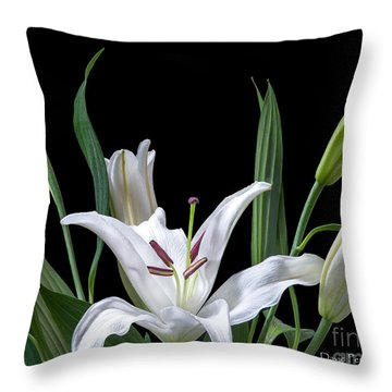 A White Oriental Lily Surrounded Throw Pillow by David Perry Lawrence