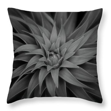 Lily Swirl Throw Pillow