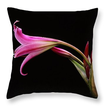 Lily X Throw Pillow