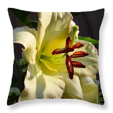 Lily's Morning Throw Pillow
