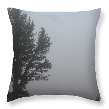 Limber Pine In Fog Throw Pillow