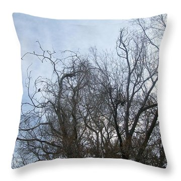Throw Pillow featuring the photograph Limbs In Air by Jewel Hengen