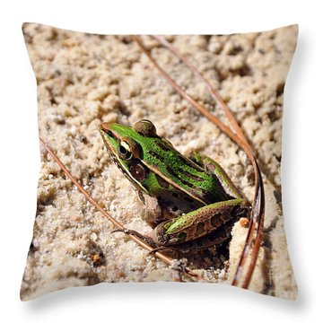 Throw Pillow featuring the photograph Lime-like by Al Powell Photography USA