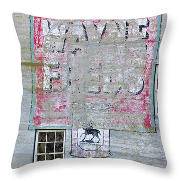 Lime Valley Mills Throw Pillow by David Arment